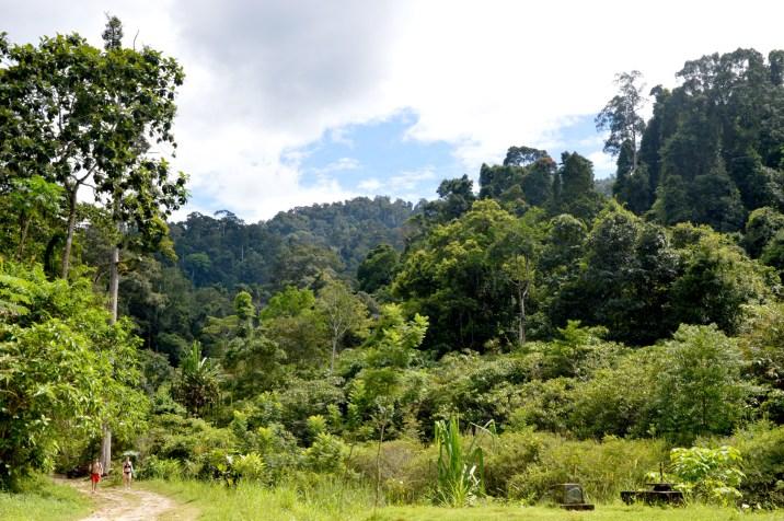 Khao Lak-Lam Ru National Park: Ton Chong Fa Waterfall