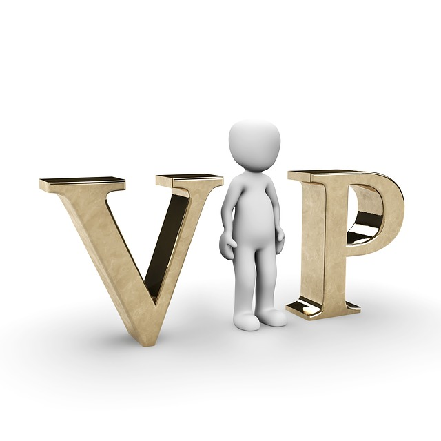 VIP 사람 유명인