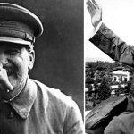 스탈린 피처