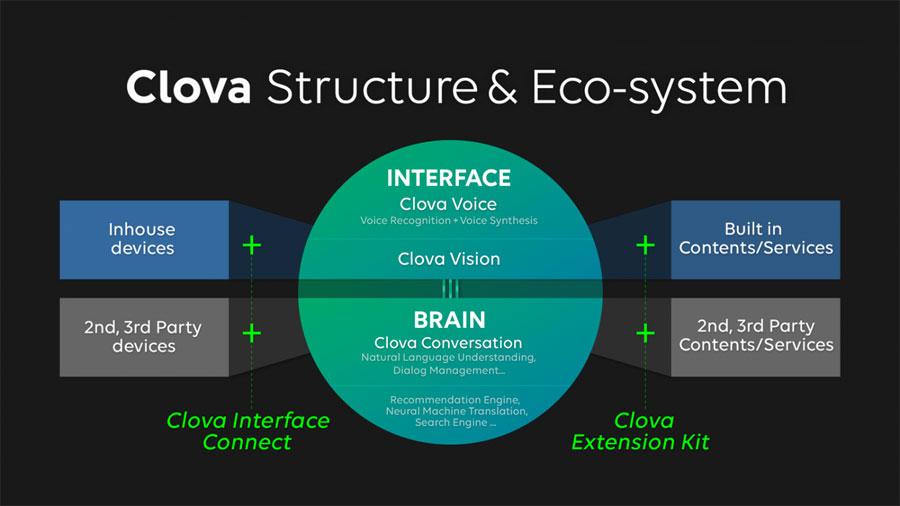 클로바의 구조와 생태계