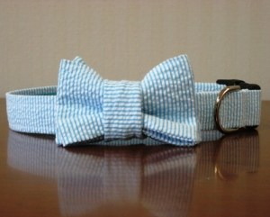 Seersucker Custom Bow Tie Dog Collar