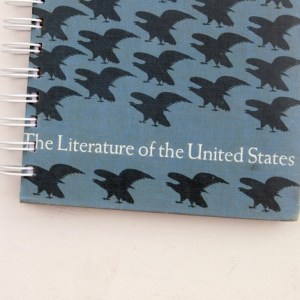 The Literature of the United States recycled book journal