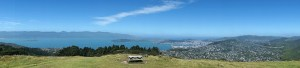View of Wellington from a Hilltop