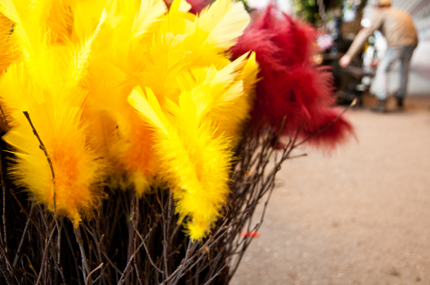 Easter feathers in Stockholm - Photography by Lola Akinmade Akerstrom