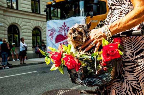 Pride_parade_in_Stockholm14