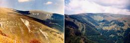 Stav zalesnenia v čase pádu lavíny (vľavo) a súčasný stav zalesnenia (vpravo)