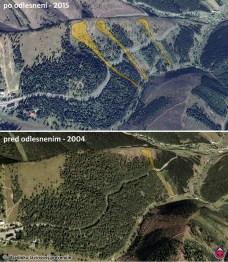 lavínové dráhy ohrozujúce cestu cez horský priechod Čertovica a stav zalesnenia svahov v roku 2004 a 2015