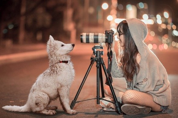 55e6dd4b4255ad14f6da8c7dda793278143fdef85254764e772c7cd4934e 640 - Easy Photography Ideas Are In The Following Article