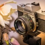 great advice to improve your photography skills fast - Great Advice To Improve Your Photography Skills Fast!