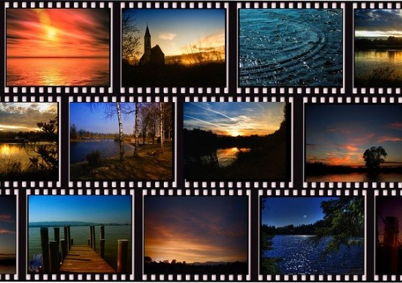 what you need to know to take great photographs 1 - What You Need To Know To Take Great Photographs
