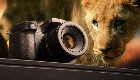 insider tips for creating spectacular photographs - Insider Tips For Creating Spectacular Photographs