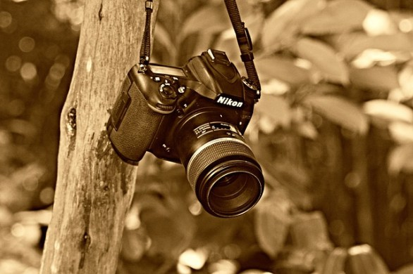 easy ways to improve your photography abilities 2 - Easy Ways To Improve Your Photography Abilities