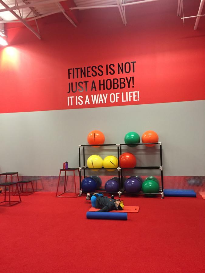 Maxx Fitness Saucon Valley : fitness, saucon, valley, Fitness, Spotlight