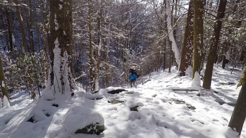 Panther Creek Trail, Cohutta Wilderness, Slucherville