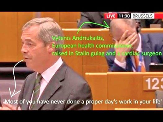 farage facepalm