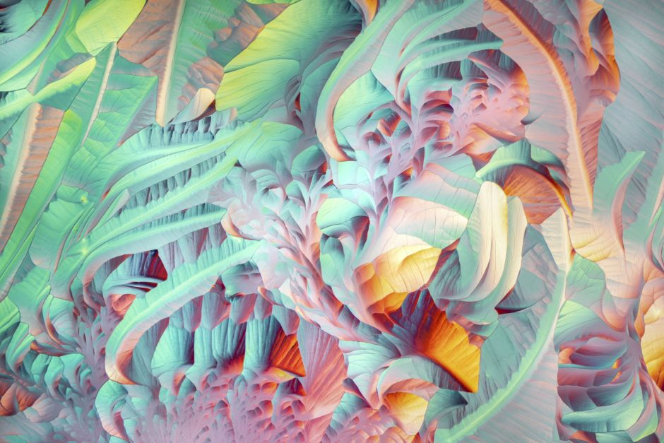 Crystals formed after heating an ethanol and water solution containing L-glutamine and beta-alanine.Microscopic images reveal the hidden beauty of the invisible world, tech news, science news, news