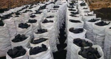 الفحم النباتي