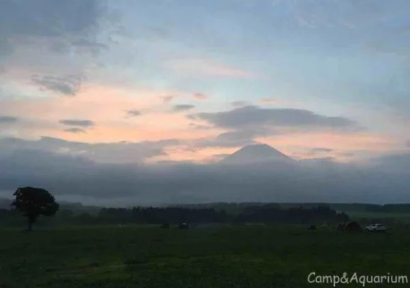ふもとっぱら 朝 富士山