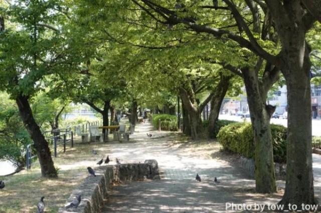 広島の川のほとり