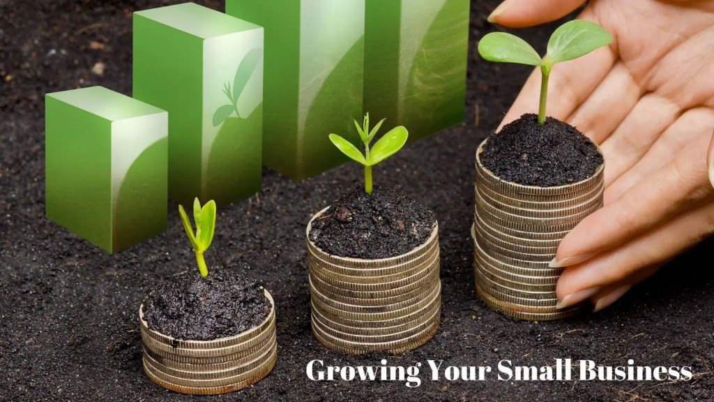 small business grows when you do