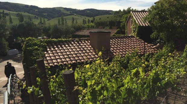cellarpass winery