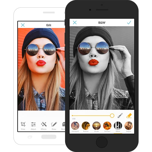 Desktop Photo Editing Tools - PicMonkey