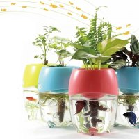 25 Office Plants That Fit on Your Desk - Small Business Trends