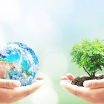 20 Green Activities to Change the Way Your Small Business Approaches Earth Day