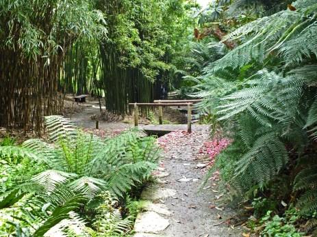 Bamboozle