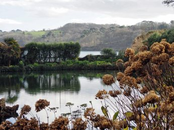 Mallard Pond and the Helford River beyond