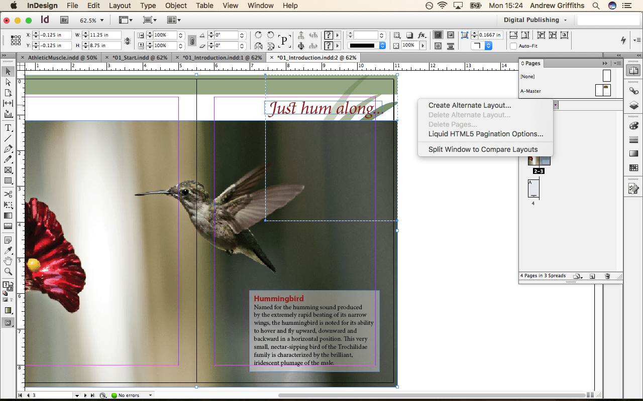Indesign For Beginners Small Business Dad