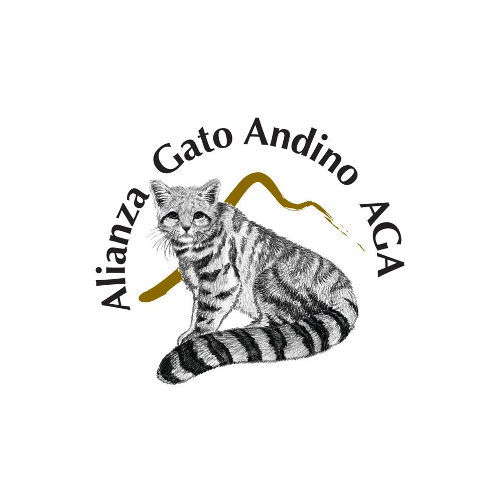 The Andean Cat Alliance