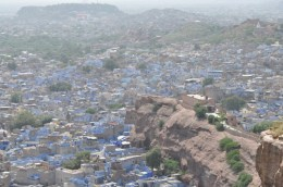 Stand on top of the Mehrangarh Fort and watch Johdpur wake up from its siesta