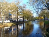 The Crooswijksesingel is next door to me