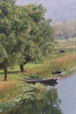 Peaceful lakes