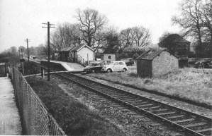 Hill End 4 looking East 1956