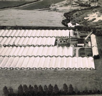 Greenhouses from the air