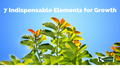 7 Indispensable Elements for Growth