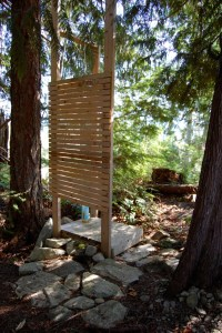 Tiny rustic cabin, outdoor shower   Small House Bliss