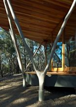 """""""Trunk House"""" in Australia uses forked tree trunks to support the roof. It has 2 bedrooms in 915 sq ft. 