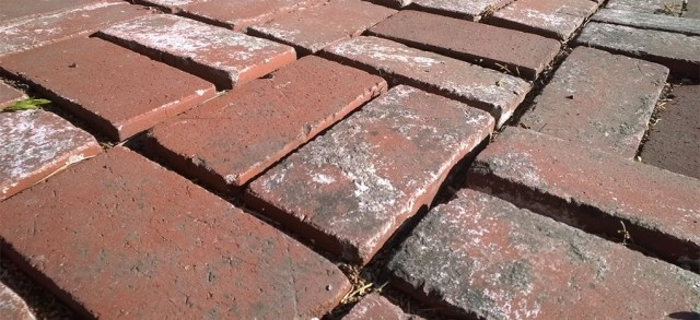 Red Bricks laid in Sand