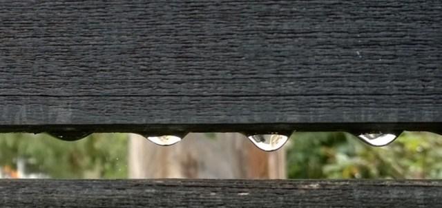 Raindrops on a Fence Montara CA
