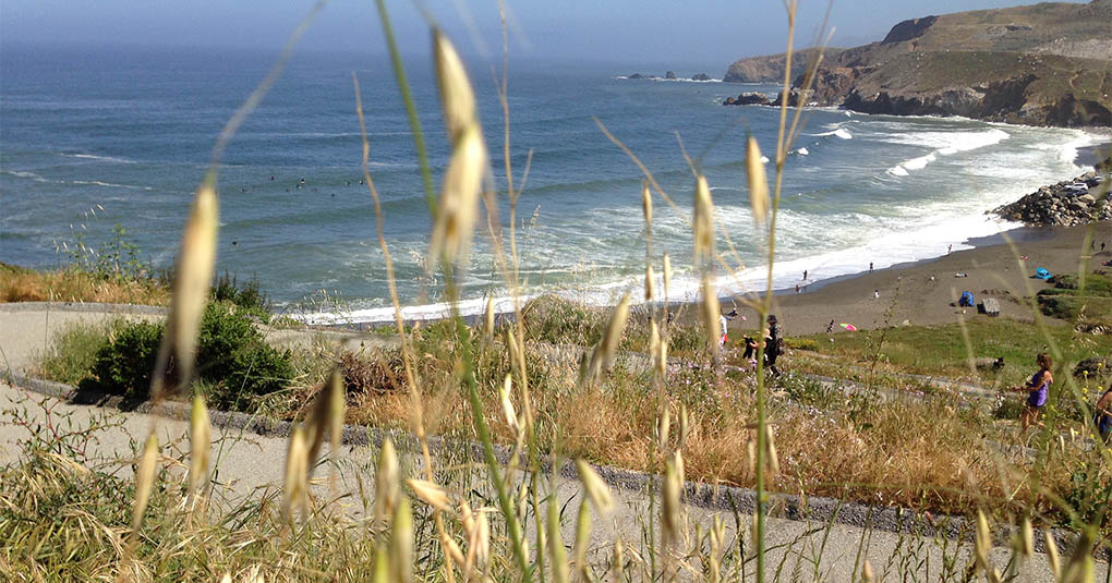 Grass and Rockaway Beach CA