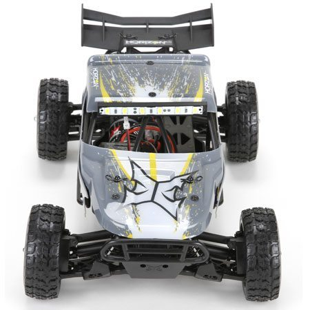 Roost 1/18 Desert Buggy from ECX