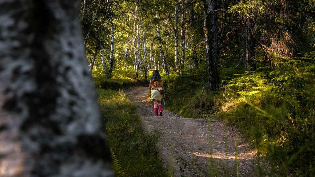 prima parte di camminata all'interno del bosco coiromonte