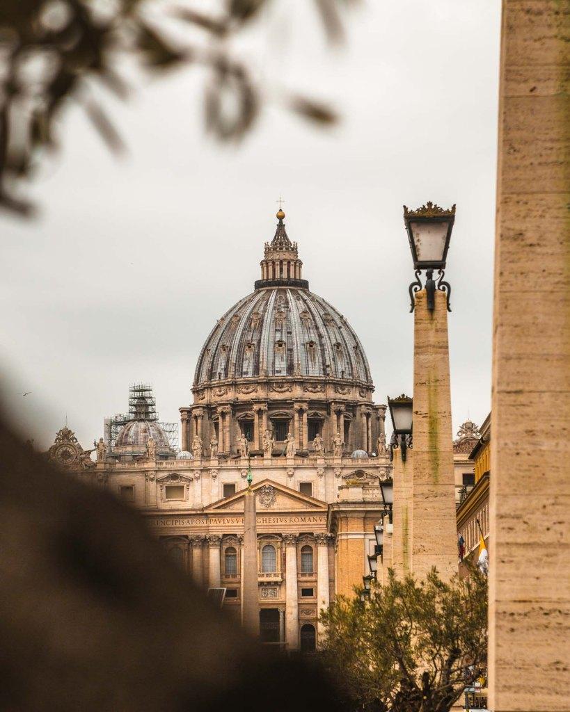 San Pietro Roma fotografata attraverso un albero