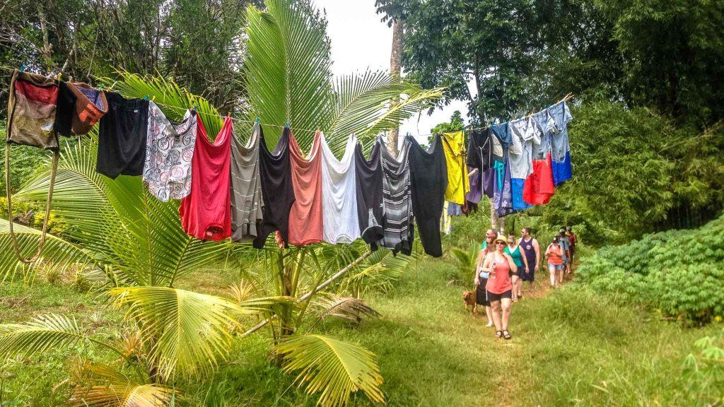 Isole Fiji panni stesi nella foresta