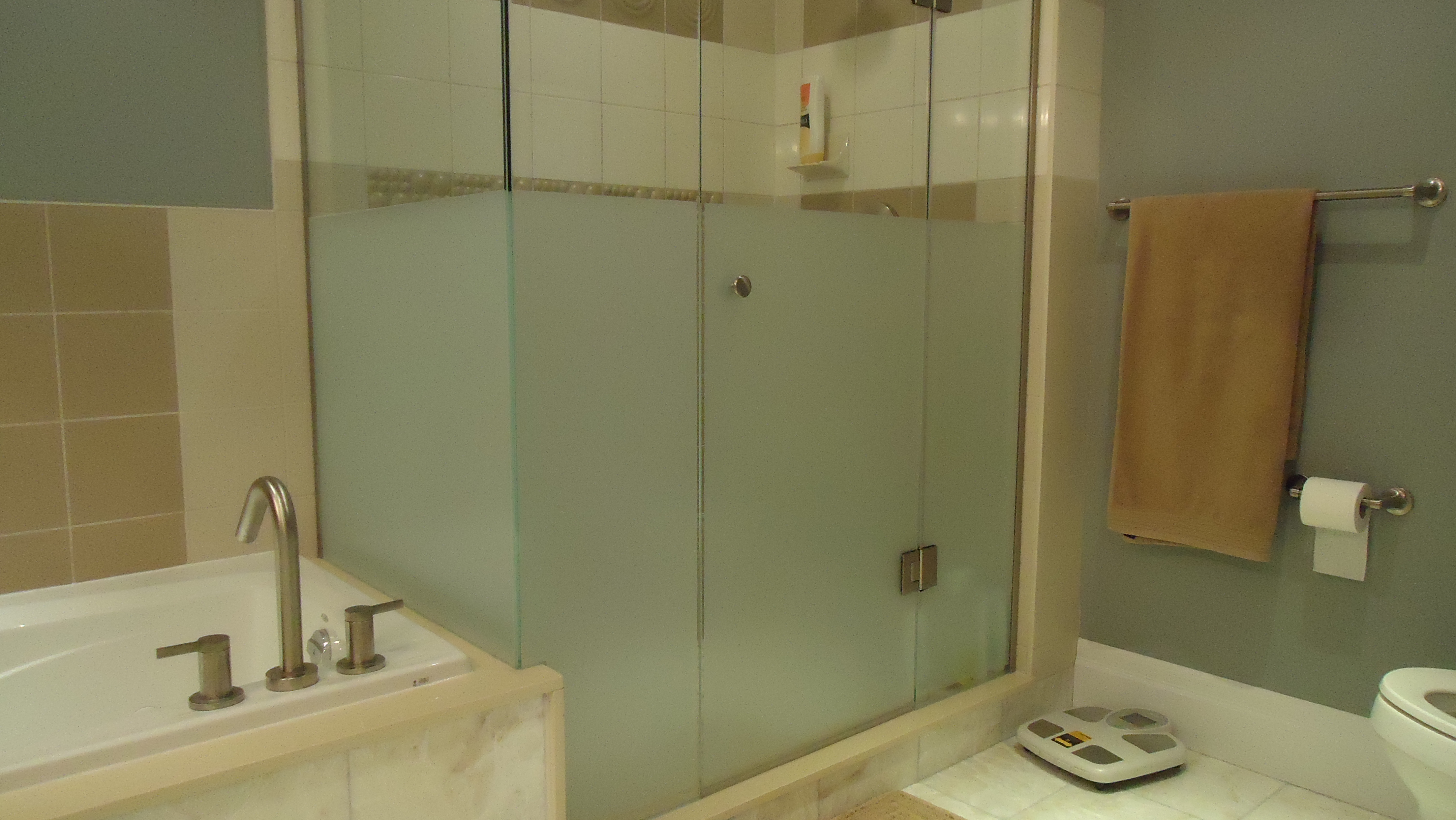 Adding privacy to a glass shower