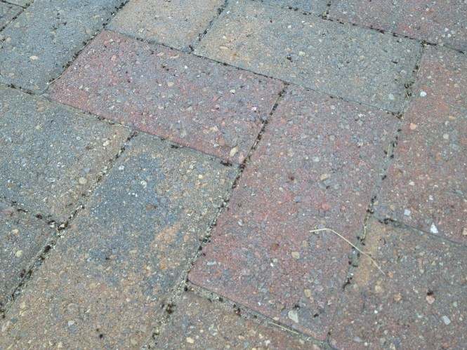 How To Get Rid Of Patio Weeds Without Chemicals Gardening Pests