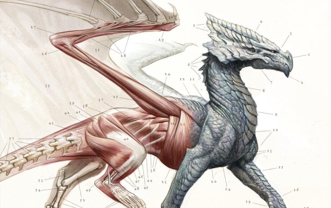 Une histoire naturelle des dragons : partez étudier les dragons avec Lady Trent